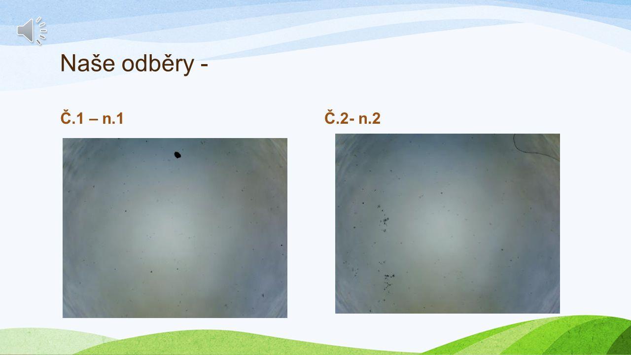 Druhý úkol Zweite Aufgabe Odběr vzorků vody- Entnahme von Wasserproben