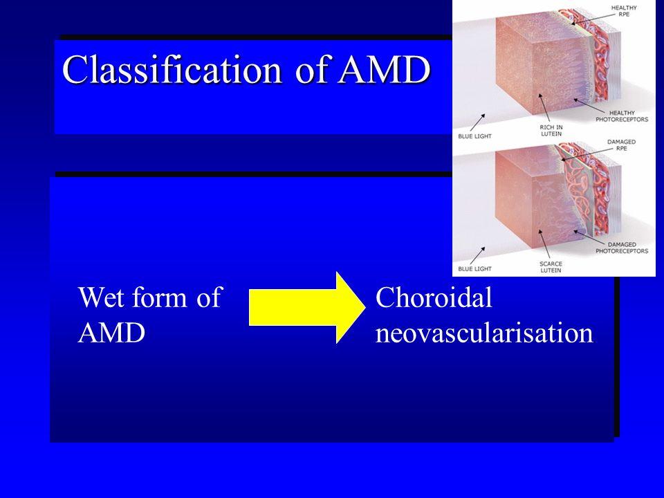 Physiological status Aging CNV Holz et al (2003) Ethiopathogenesis of AMD