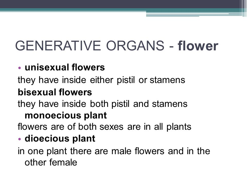 unisexual flowers they have inside either pistil or stamens bisexual flowers they have inside both pistil and stamens monoecious plant flowers are of both sexes are in all plants dioecious plant in one plant there are male flowers and in the other female