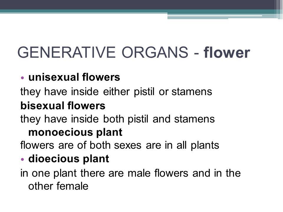 GENERATIVE ORGANS - flower symmetry of the flower ▫ symmetrical (dead-nettle) ▫ regular (cherry) ▫ asymmetrical