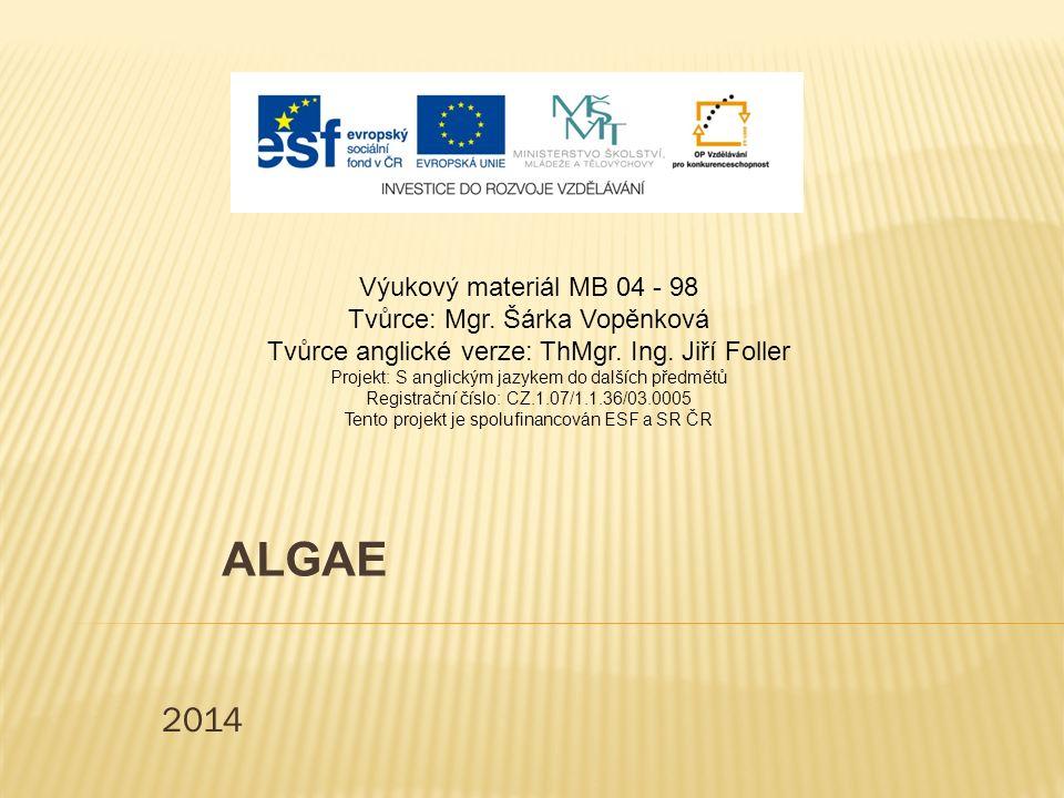 2014 ALGAE Výukový materiál MB 04 - 98 Tvůrce: Mgr.