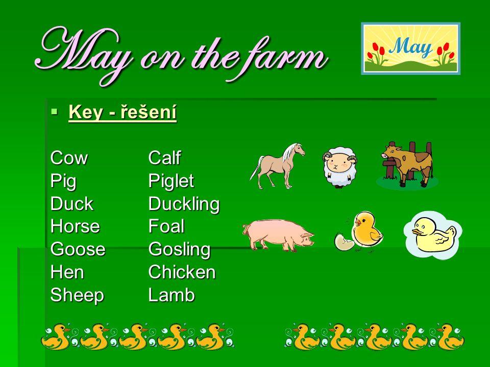 May on the farm  Key - řešení CowCalf PigPiglet DuckDuckling HorseFoal GooseGosling HenChicken SheepLamb