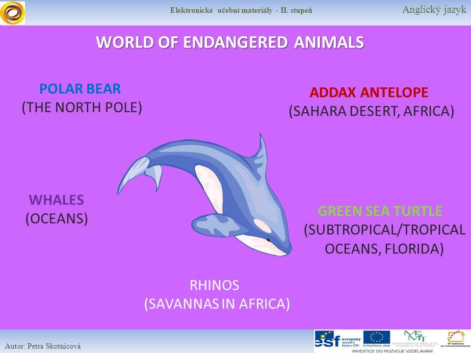 Elektronické učební materiály - II. stupeň Anglický jazyk Autor: Petra Skotnicová WORLD OF ENDANGERED ANIMALS POLAR BEAR (THE NORTH POLE) WHALES (OCEA