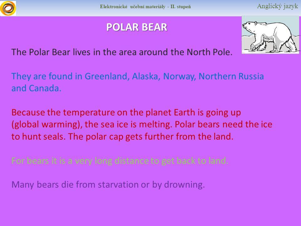 Elektronické učební materiály - II. stupeň Anglický jazyk POLAR BEAR The Polar Bear lives in the area around the North Pole. They are found in Greenla