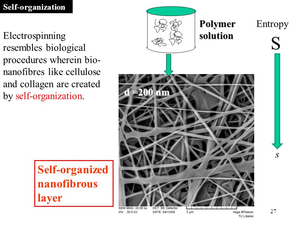 27 d =200 nm Polymer solution Self-organized nanofibrous layer s S Electrospinning resembles biological procedures wherein bio- nanofibres like cellulose and collagen are created by self-organization.