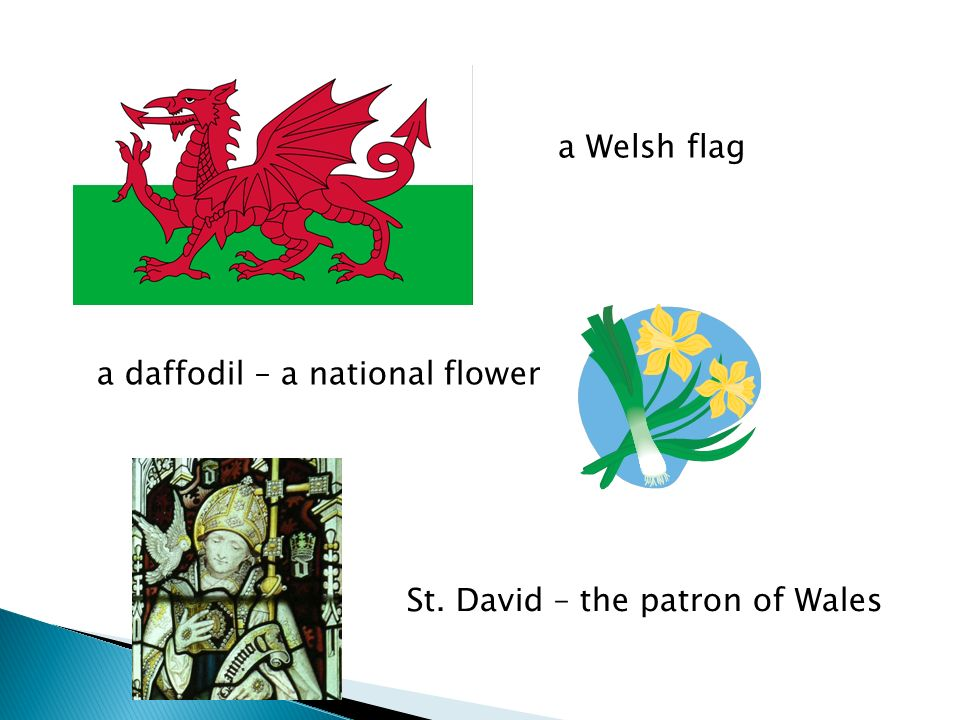 a Welsh flag a daffodil – a national flower St. David – the patron of Wales