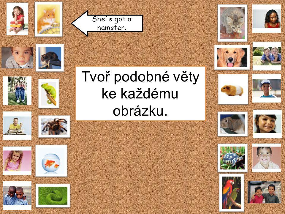 She´s got a rabbit.He´s got a mouse. They´ve got a lizard.