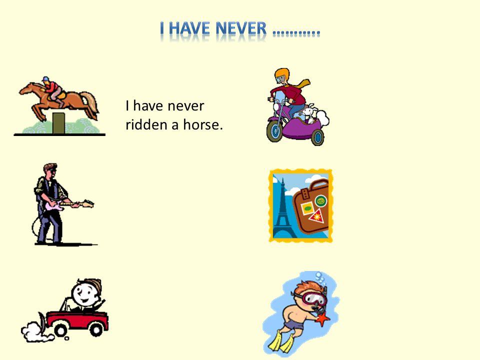 I have never ridden a horse.