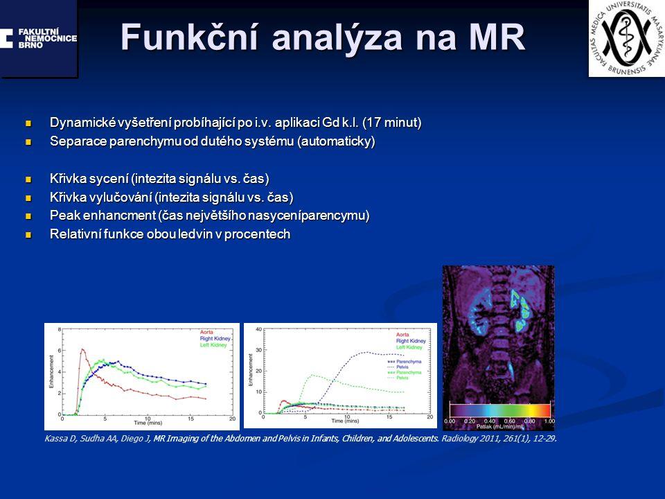 Funkční analýza na MR Dynamické vyšetření probíhající po i.v. aplikaci Gd k.l. (17 minut) Dynamické vyšetření probíhající po i.v. aplikaci Gd k.l. (17