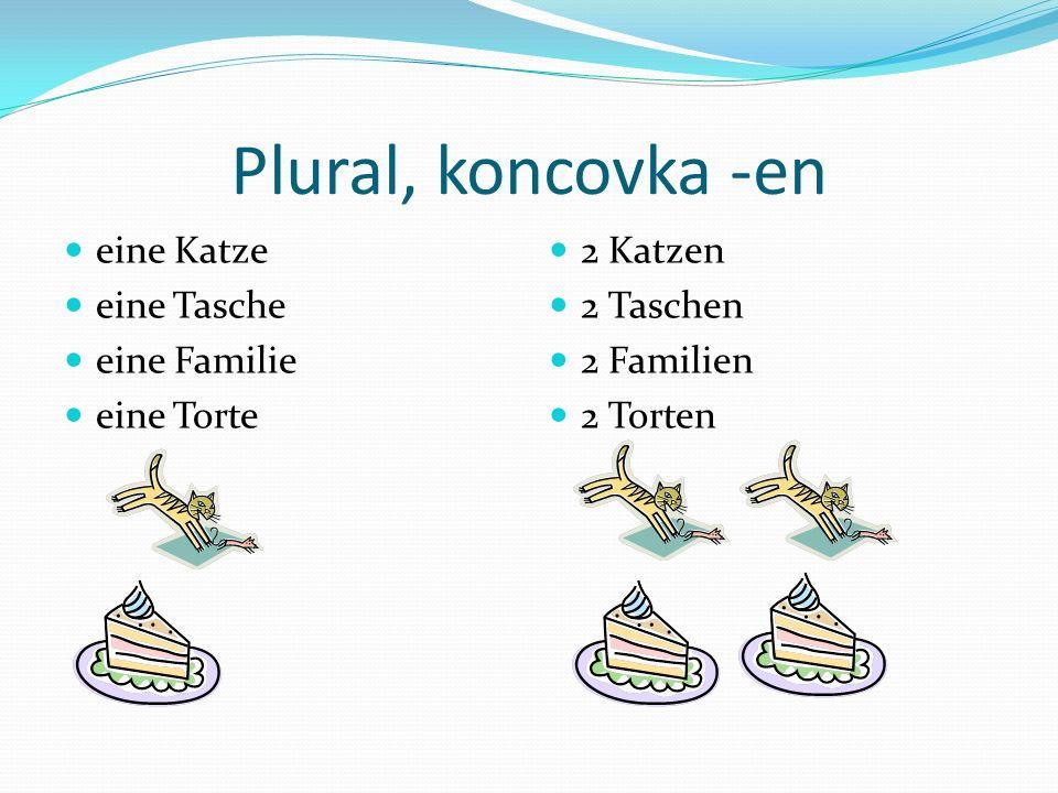 Plural, koncovka -en eine Katze eine Tasche eine Familie eine Torte 2 Katzen 2 Taschen 2 Familien 2 Torten