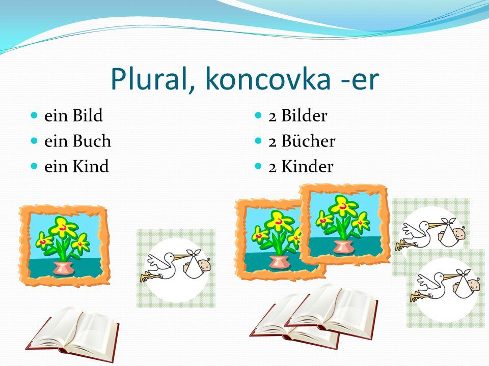 Plural, koncovka -er ein Bild ein Buch ein Kind 2 Bilder 2 Bücher 2 Kinder