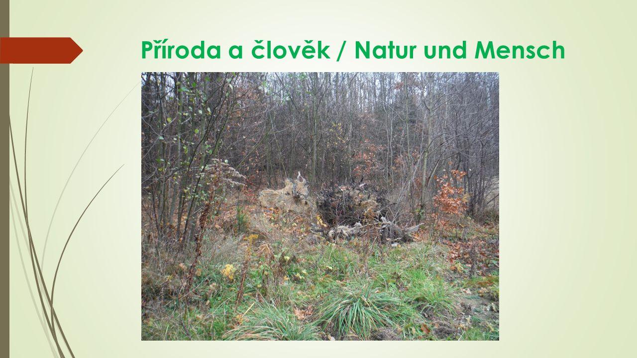 Příroda a člověk / Natur und Mensch