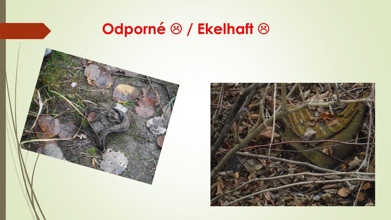 Odporné  / Ekelhaft 