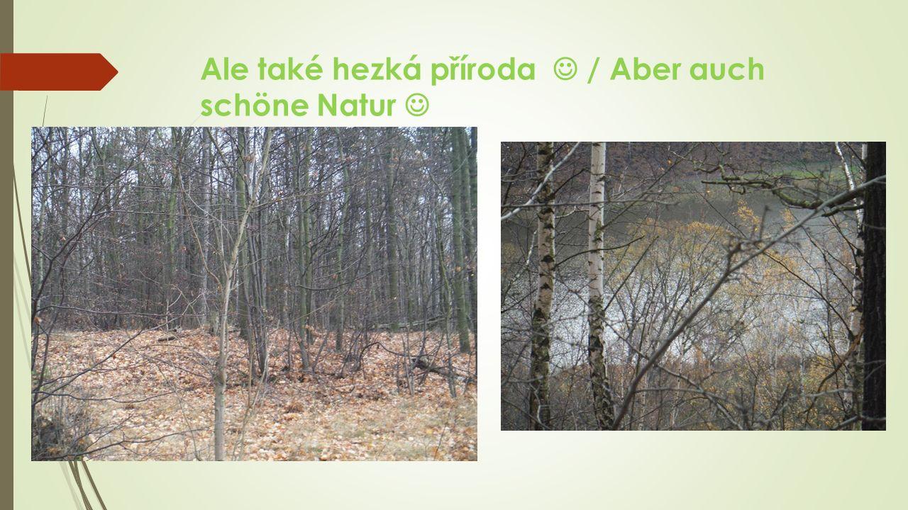 Ale také hezká příroda / Aber auch schöne Natur