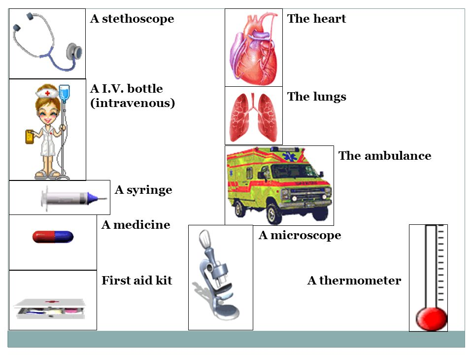 A stethoscope A syringe A medicine First aid kit The heart The lungs The ambulance A microscope A thermometer A I.V.