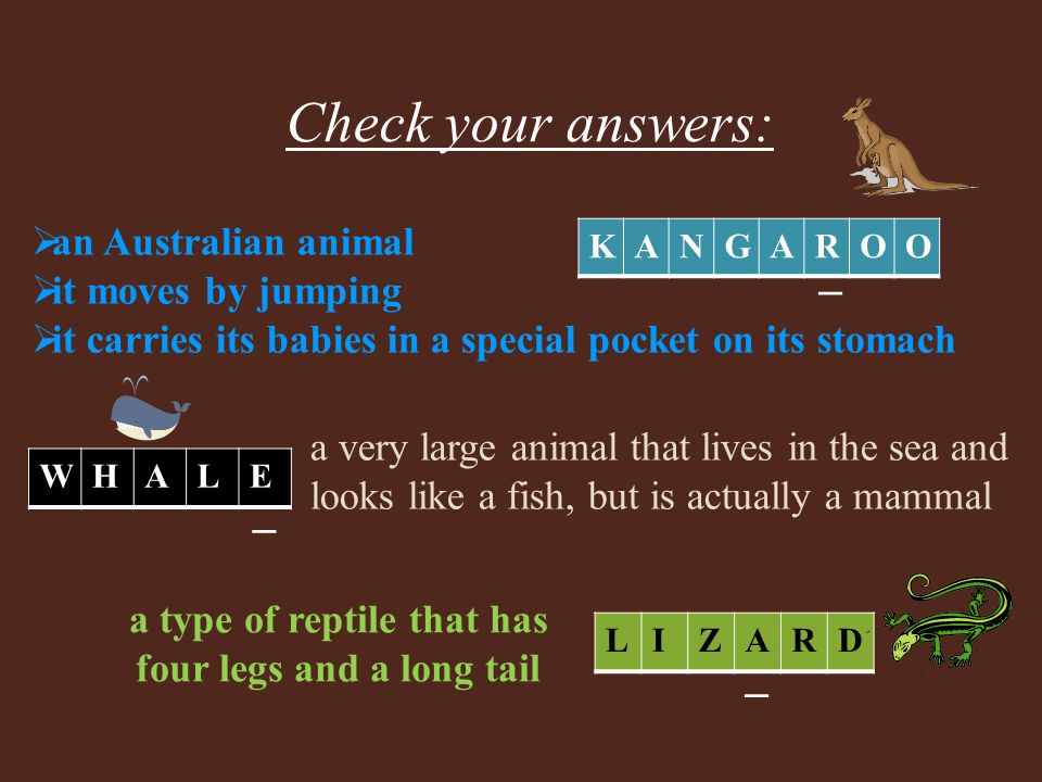 _ _ KANGAROO WHALE a very large animal that lives in the sea and looks like a fish, but is actually a mammal _ LIZARD a type of reptile that has four