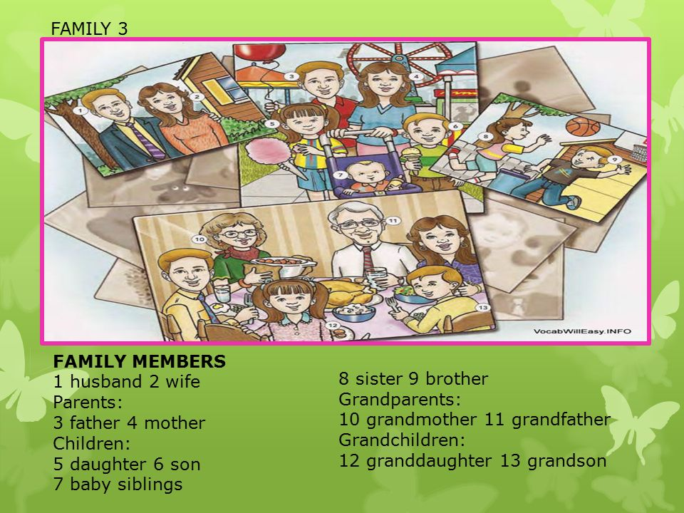 FAMILY MEMBERS 1 husband 2 wife Parents: 3 father 4 mother Children: 5 daughter 6 son 7 baby siblings 8 sister 9 brother Grandparents: 10 grandmother 11 grandfather Grandchildren: 12 granddaughter 13 grandson FAMILY 3