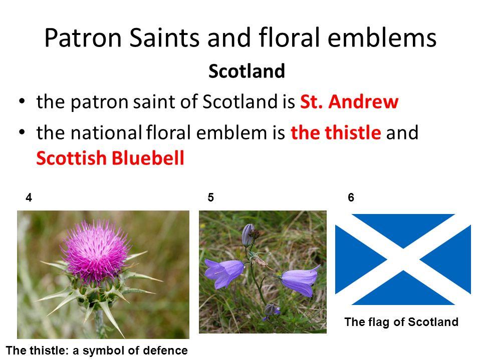 Patron Saints and floral emblems Wales St.