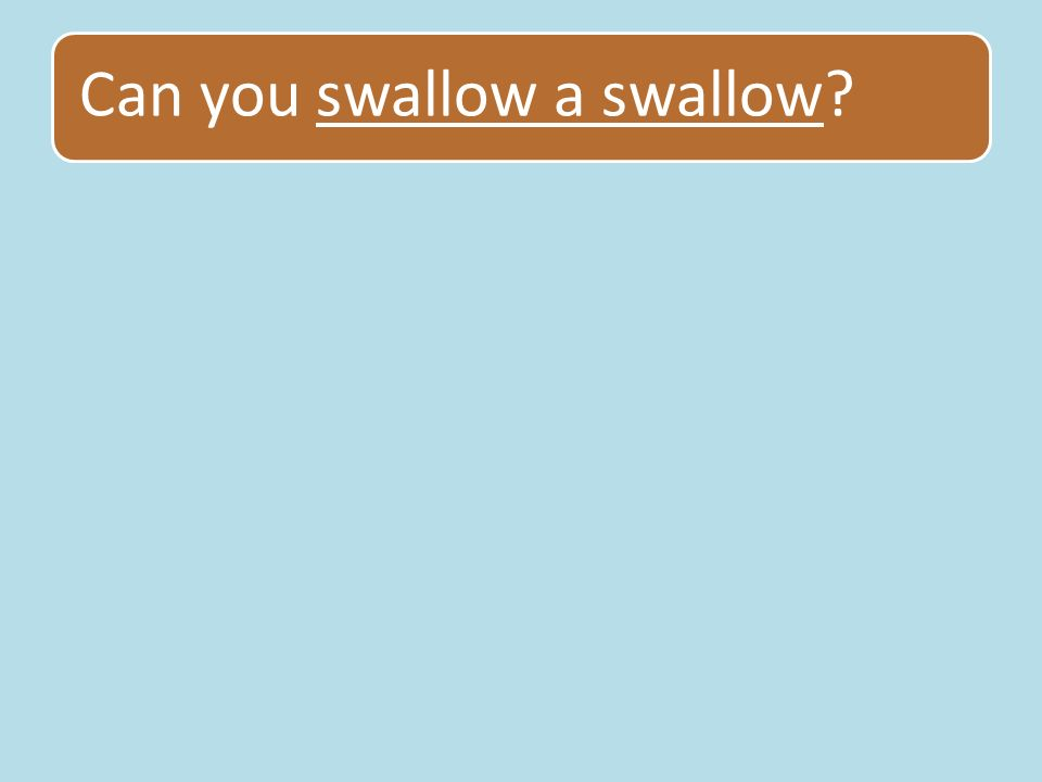 Can you swallow a swallow