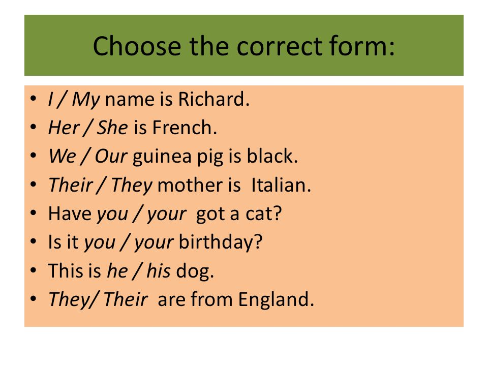 Choose the correct form: I / My name is Richard. Her / She is French. We / Our guinea pig is black. Their / They mother is Italian. Have you / your go