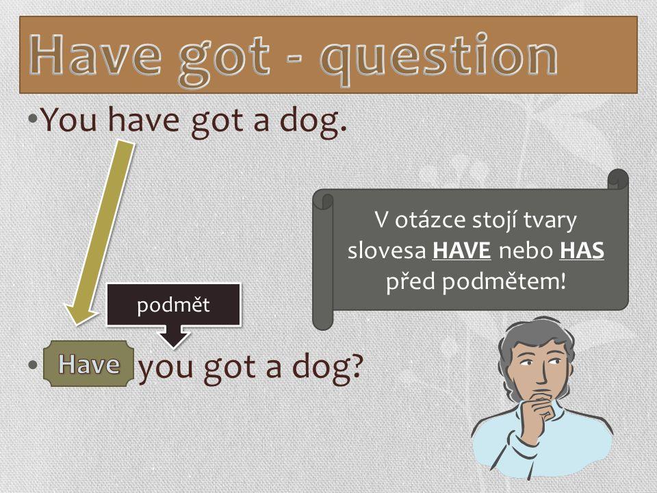 You have got a dog. you got a dog podmět V otázce stojí tvary slovesa HAVE nebo HAS před podmětem!