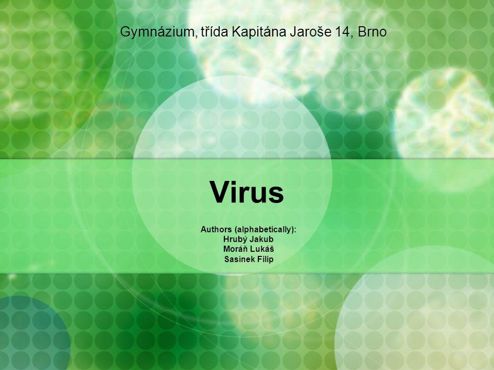 Virus Authors (alphabetically): Hrubý Jakub Moráň Lukáš Sasínek Filip Gymnázium, třída Kapitána Jaroše 14, Brno