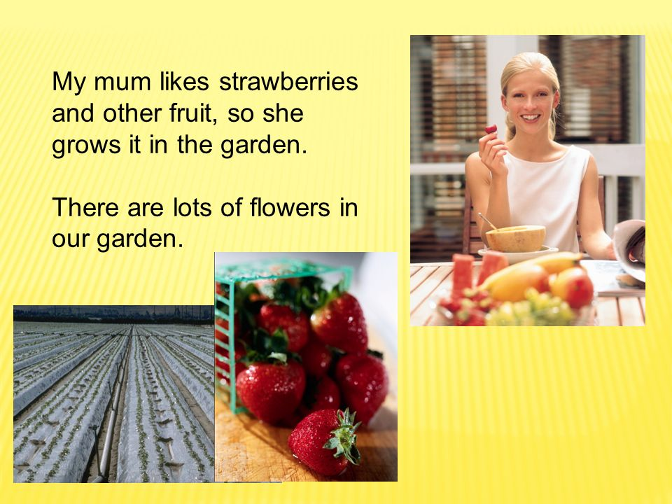 My mum likes strawberries and other fruit, so she grows it in the garden.