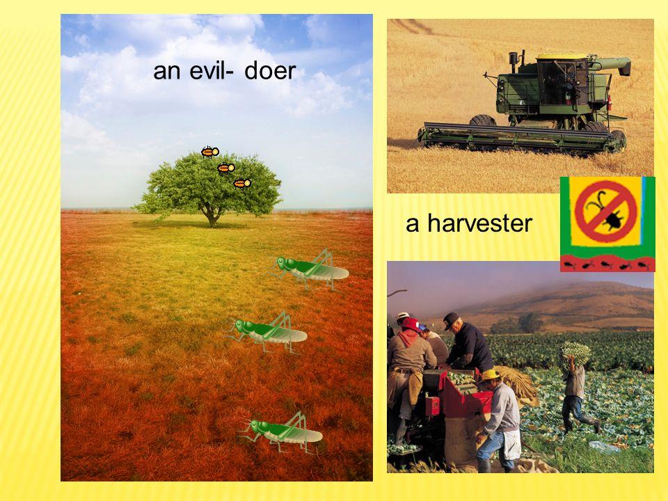an evil- doer a harvester