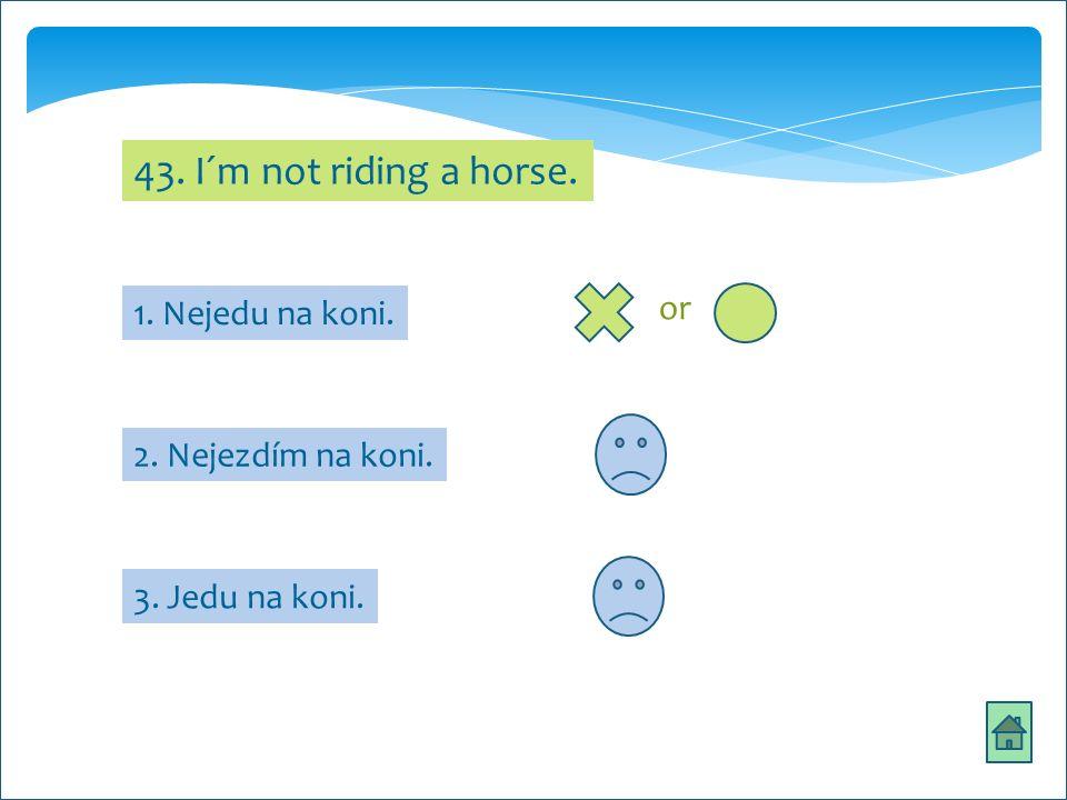 43. I´m not riding a horse. 2. Nejezdím na koni. 3. Jedu na koni. 1. Nejedu na koni. or