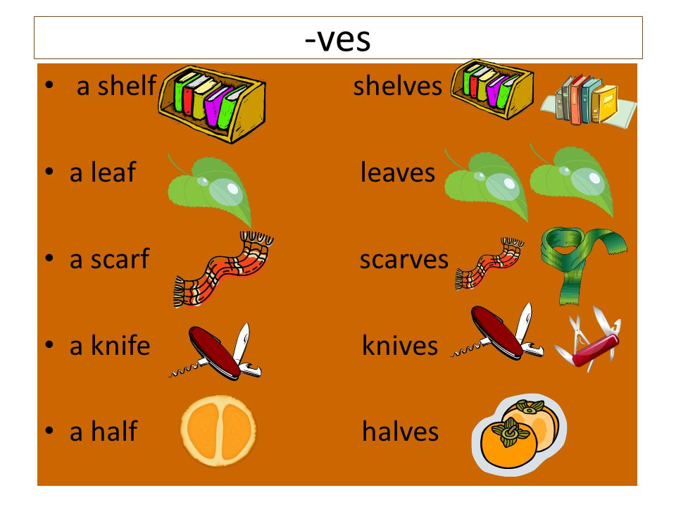-ves a shelf shelves a leaf leaves a scarf scarves a knife knives a half halves