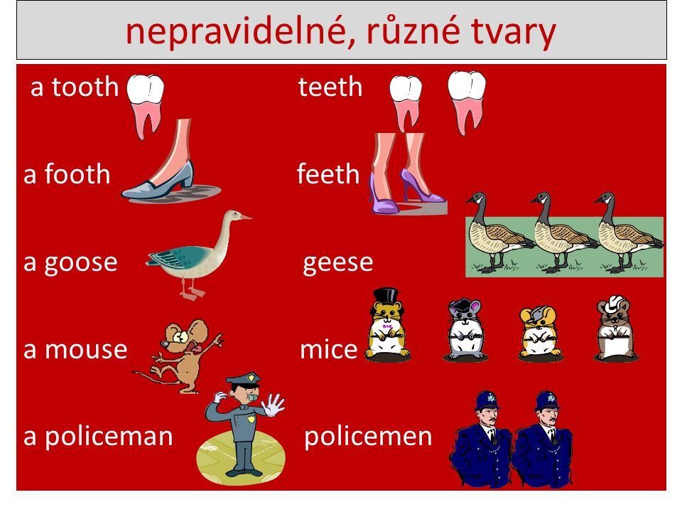 a tooth teeth a footh feeth a goose geese a mouse mice a policeman policemen nepravidelné, různé tvary