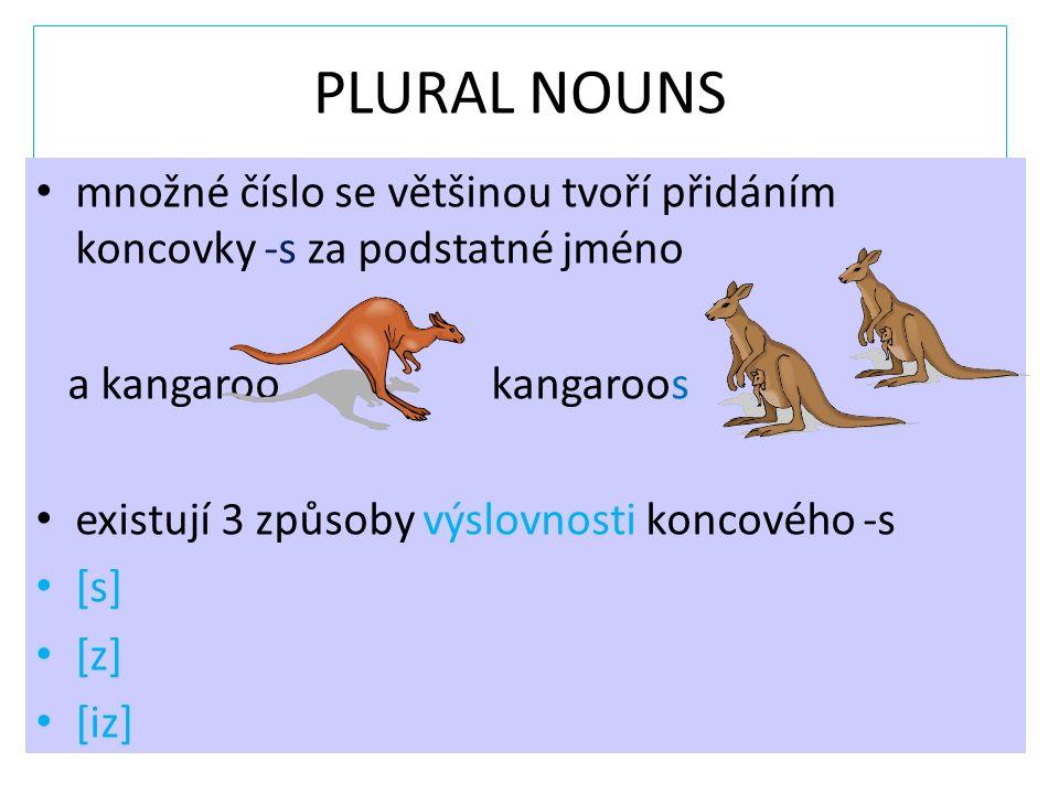 PLURAL NOUNS množné číslo se většinou tvoří přidáním koncovky -s za podstatné jméno a kangaroo kangaroos existují 3 způsoby výslovnosti koncového -s [s] [z] [iz]