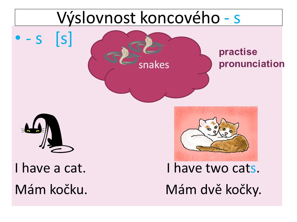 - s [s] I have a cat. I have two cats. Mám kočku.