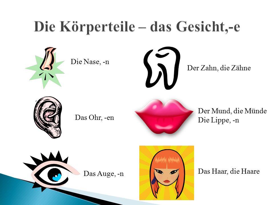 Die Nase, -n Das Ohr, -en Das Auge, -n Der Zahn, die Zähne Das Haar, die Haare Der Mund, die Münde Die Lippe, -n