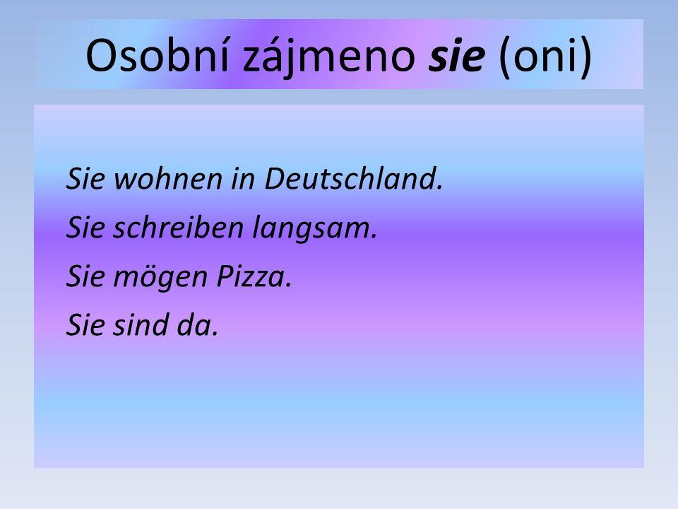 Osobní zájmeno sie (oni) Sie wohnen in Deutschland.