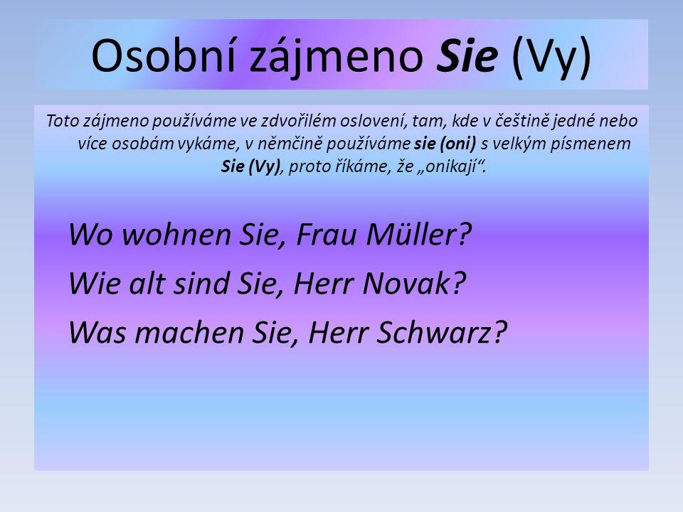 """Osobní zájmeno Sie (Vy) Toto zájmeno používáme ve zdvořilém oslovení, tam, kde v češtině jedné nebo více osobám vykáme, v němčině používáme sie (oni) s velkým písmenem Sie (Vy), proto říkáme, že """"onikají ."""