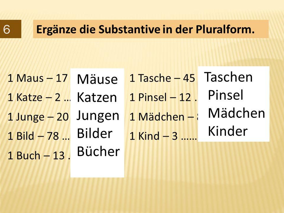 6 Ergänze die Substantive in der Pluralform.1 Maus – 17 …………… 1 Tasche – 45 …………………….