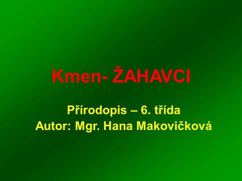 Kmen- ŽAHAVCI Přírodopis – 6. třída Autor: Mgr. Hana Makovičková