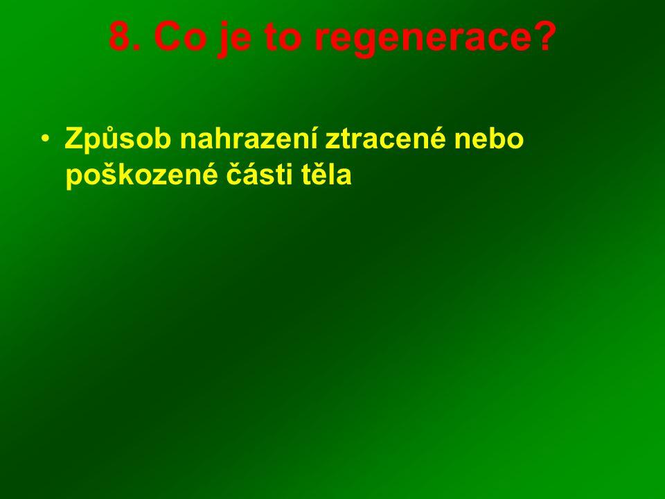 8. Co je to regenerace? Způsob nahrazení ztracené nebo poškozené části těla