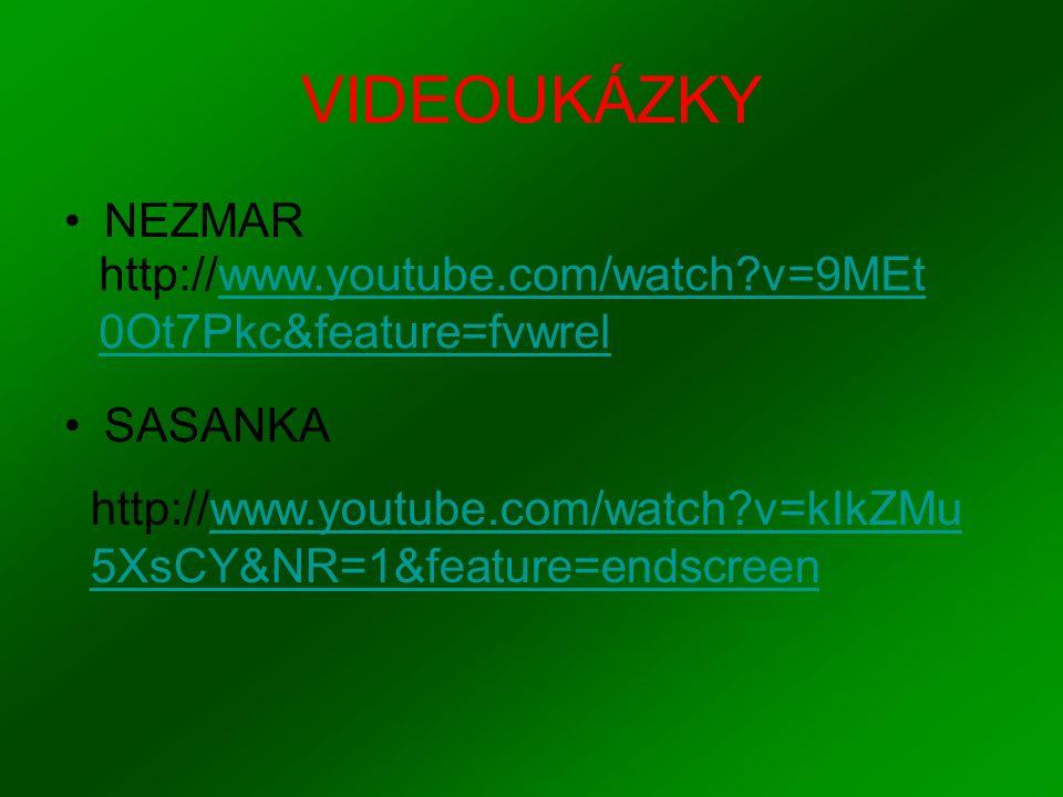 VIDEOUKÁZKY NEZMAR SASANKA http://www.youtube.com/watch?v=9MEt 0Ot7Pkc&feature=fvwrel http://www.youtube.com/watch?v=kIkZMu 5XsCY&NR=1&feature=endscre