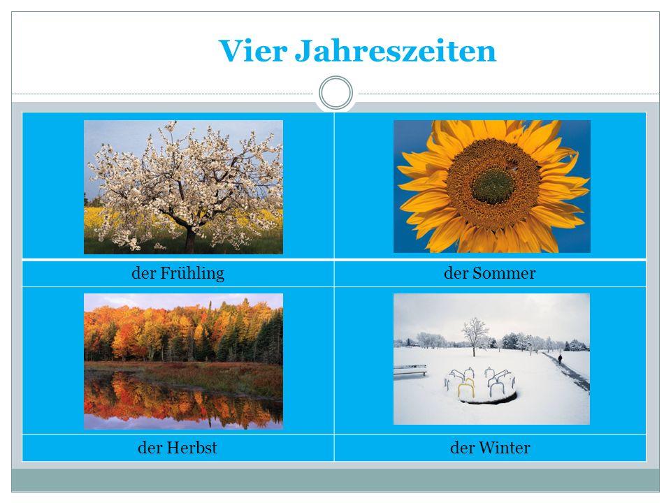 Vier Jahreszeiten der Frühlingder Sommer der Herbstder Winter