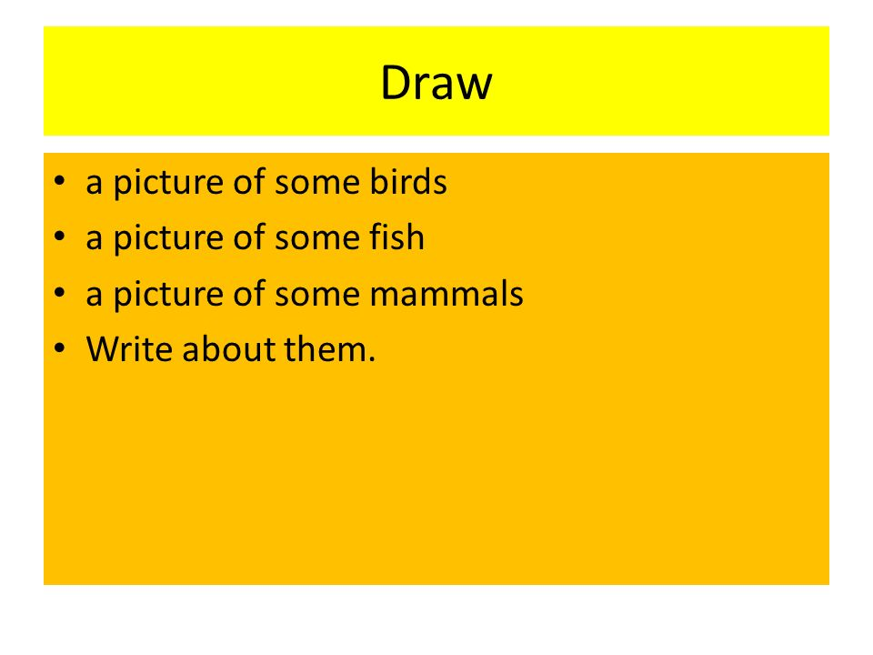 Draw a picture of some birds a picture of some fish a picture of some mammals Write about them.