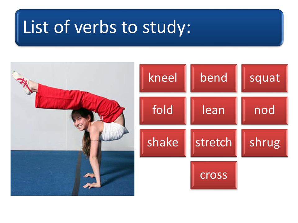 shake shrug fold kneel cross nod bend squat lean stretch Which body part(s) do you use?