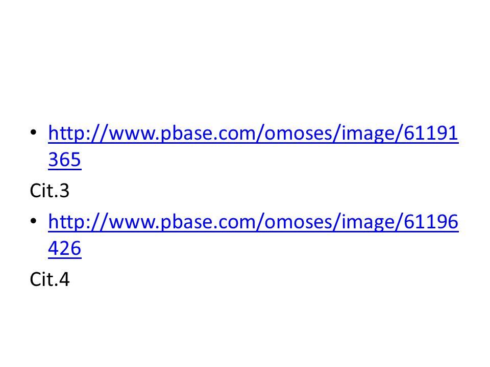 http://www.pbase.com/omoses/image/61191 365 http://www.pbase.com/omoses/image/61191 365 Cit.3 http://www.pbase.com/omoses/image/61196 426 http://www.p