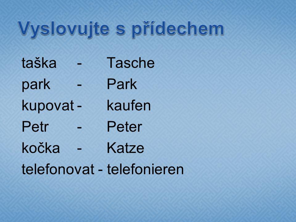 taška -Tasche park -Park kupovat-kaufen Petr-Peter kočka-Katze telefonovat - telefonieren