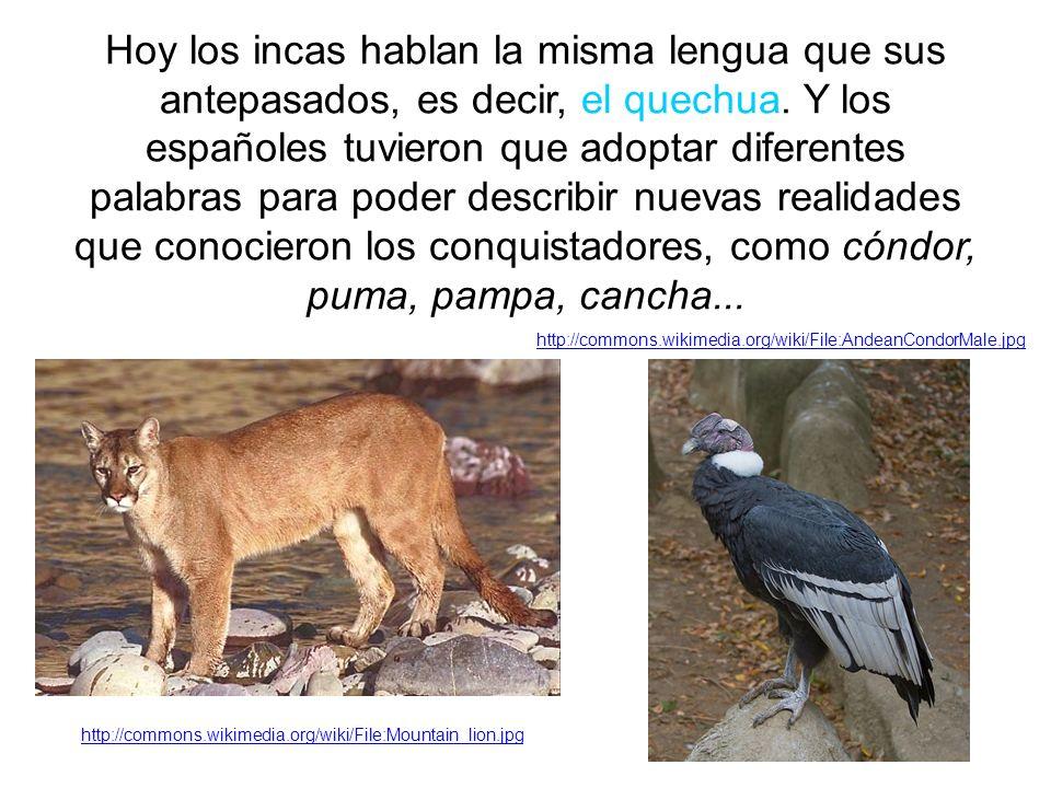 Hoy los incas hablan la misma lengua que sus antepasados, es decir, el quechua.