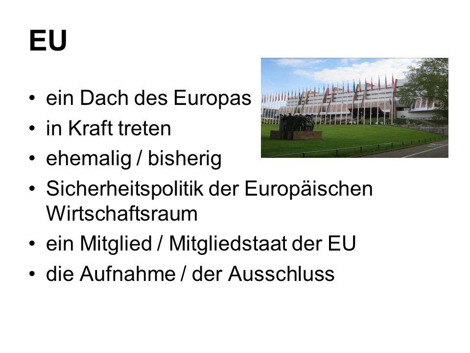 EU ein Dach des Europas in Kraft treten ehemalig / bisherig Sicherheitspolitik der Europäischen Wirtschaftsraum ein Mitglied / Mitgliedstaat der EU die Aufnahme / der Ausschluss