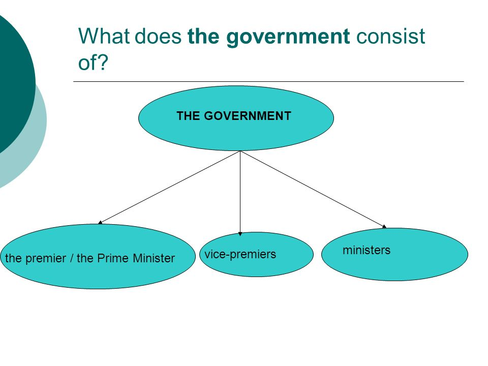 What does the government consist of.