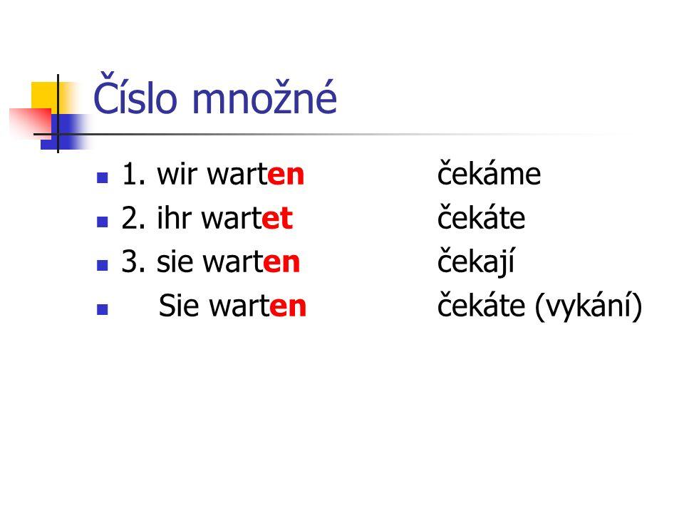 Doplň správný tvar slovesa Ich …….auf dich. ……. du schon lange.