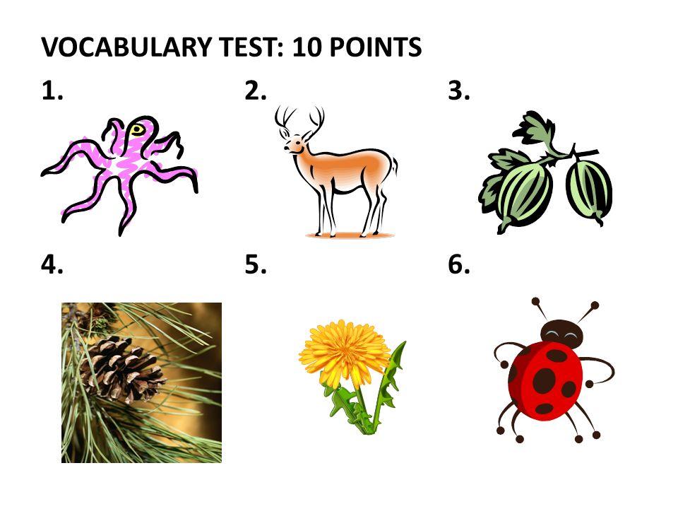 VOCABULARY TEST: 10 POINTS 1.2.3. 4.5.6.